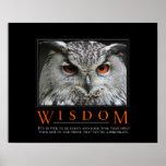 Poster de Demotivational de la sabiduría Póster