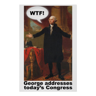 Poster de George Washington WTF (con el subtítulo)