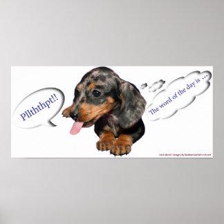 Poster de la actitud del perrito del Dachshund