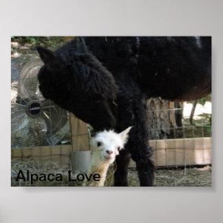 Poster de la alpaca de la madre y de la hija