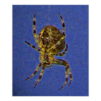 Poster de la araña del orbe