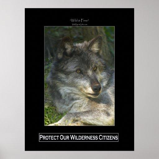 Poster de la ayuda de la fauna del LOBO GRIS