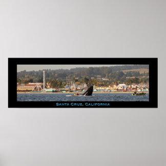 Poster de la ballena jorobada del paseo marítimo d