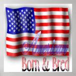 Poster de la bandera americana póster