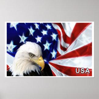 Poster de la bandera de los Estados Unidos de Amér