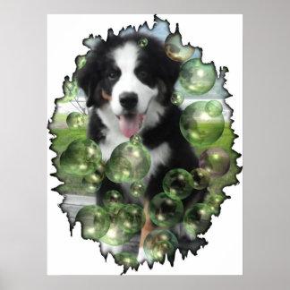 Poster de la burbuja del perro de montaña de Berne