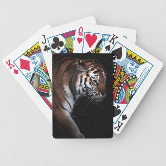 Poster de la búsqueda de los tigres barajas de cartas