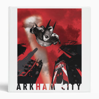 """Poster de la CA - el volar de Batman Carpeta 1 1/2"""""""