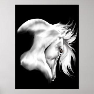 Poster de la cabeza de caballo de Whte