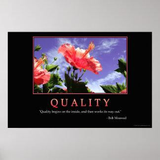 Poster de la calidad
