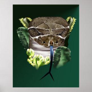 Poster de la cara de la serpiente del traqueteo