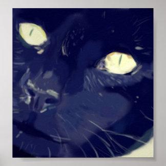 Poster de la cara del gato de Digitaces
