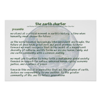 POSTER de la carta de la tierra