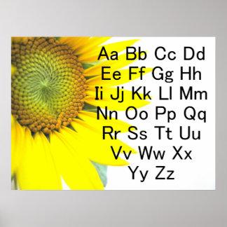 Poster de la carta del alfabeto del girasol póster