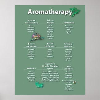 Poster de la carta del Aromatherapy del verde de m