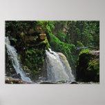 Poster de la cascada de la selva tropical del Bras Póster