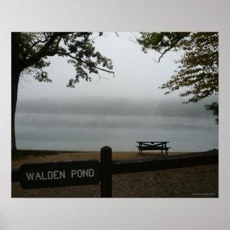 Poster de la charca de Walden - niebla contemplati