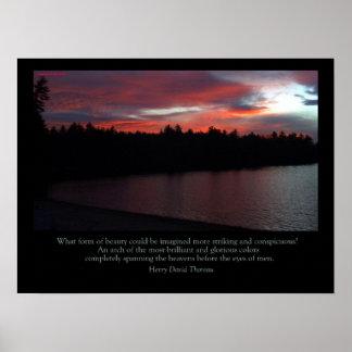 Poster de la charca de Walden - nota del amor al c