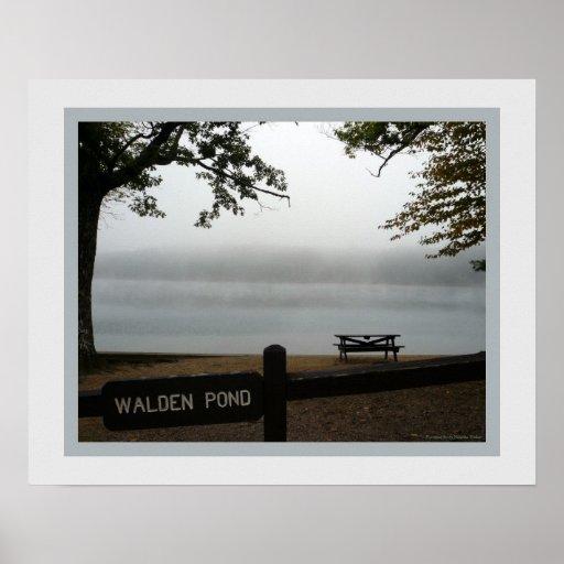Poster de la charca de Walden - ventana en la nieb