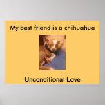 poster de la chihuahua