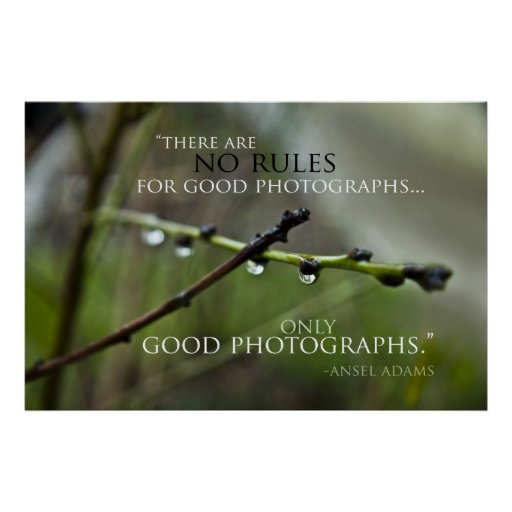 Poster de la cita 3 de la fotografía
