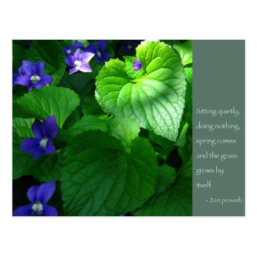 Poster de la cita del proverbio del zen tarjetas postales