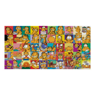 Poster de la colección de la cubierta de Garfield