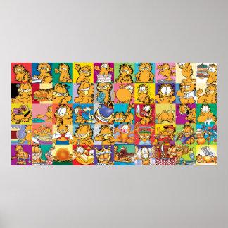 Poster de la colección de la cubierta de Garfield Póster