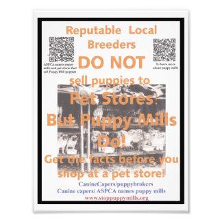 Poster de la conciencia del molino del perrito fotografías