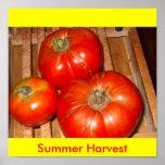 Poster de la cosecha del verano