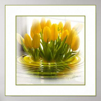 Poster de la dicha del tulipán - póster
