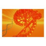 Poster de la DNA