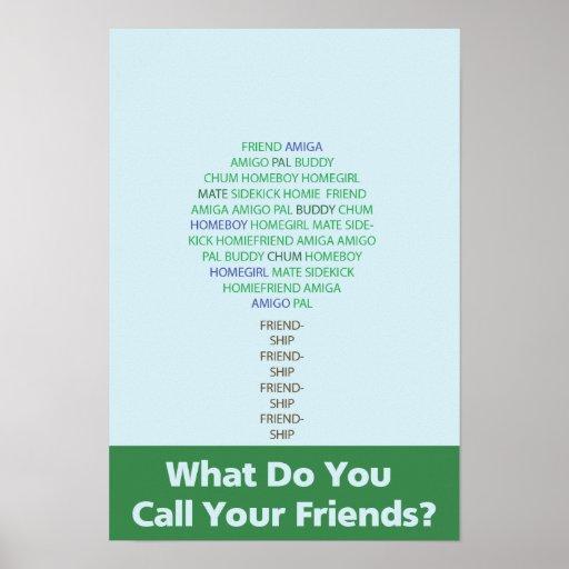 Poster de la escuela de la amistad