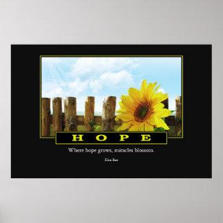 Poster de la esperanza: Elna Rae