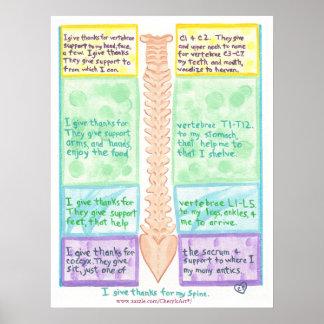 Poster de la espina dorsal - doy las gracias por póster