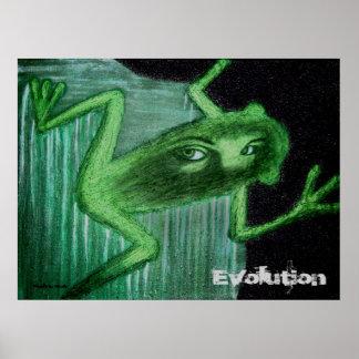 Poster de la evolución (la rana)