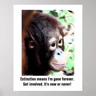 Poster de la extinción de la fauna