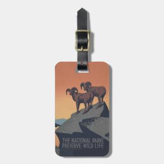 Poster de la fauna de las ovejas de Bighorn del vi Etiqueta De Equipaje
