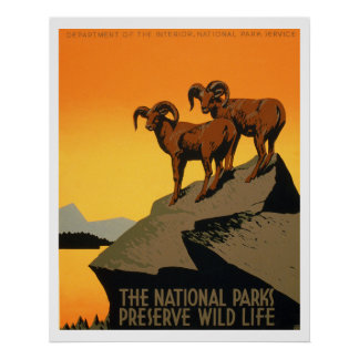 Poster de la fauna del coto del vintage