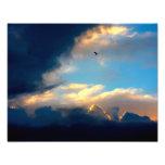 Poster de la foto del cielo y del pájaro