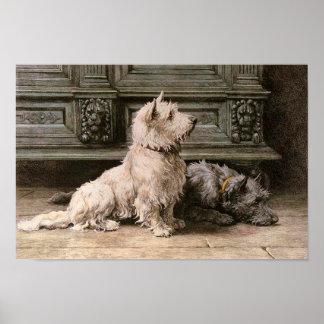 Poster de la imagen del perro del vintage