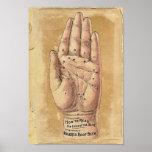Poster de la lectura de la palma