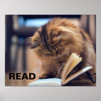Poster de la lectura para apoyar la instrucción en