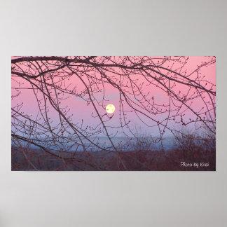 Poster de la luna