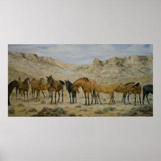 Poster de la manada del caballo