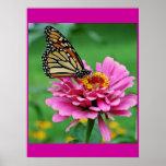 Poster de la mariposa
