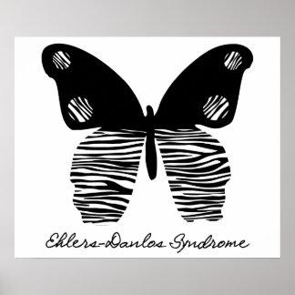 Poster de la mariposa 24X20 de la raya de la cebra