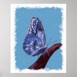 Poster de la mariposa de la nieve