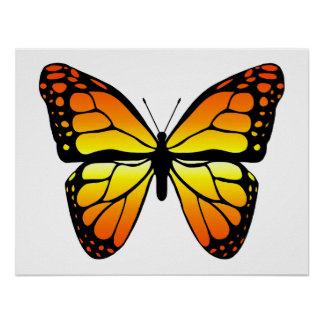 Poster de la mariposa de monarca