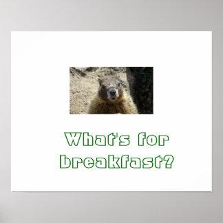 ¡Poster de la marmota! Póster